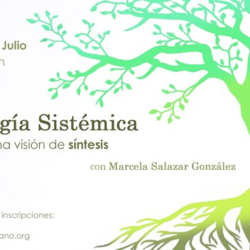Psicología Sistémica: Aportes a una visión de síntesis