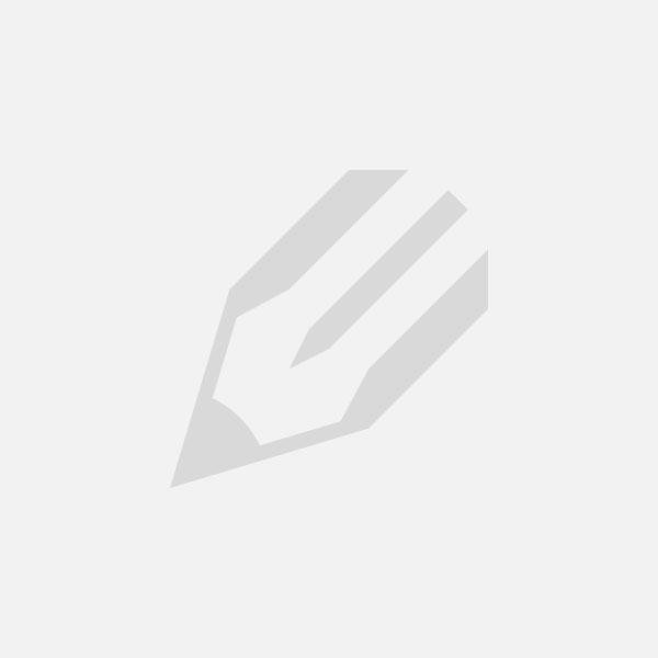 Módulo II de Sintergética: Sintergética y reflexoterapias
